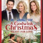 A GODWINK CHRISTMAS MEANT FOR LOVE