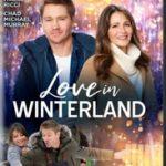LOVE IN WINTERLAND (HALLMARK)